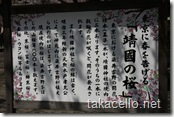 靖国神社の桜・解説