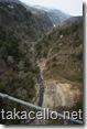 九重夢吊橋の下側:チビりそうです