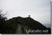 展望台を望む:佐多岬