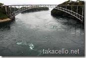 西海橋と渦潮