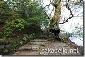 大願寺から多宝塔への小道
