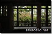 千畳閣から八重桜を眺める