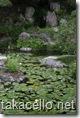根来寺名勝庭園