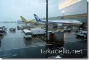 羽田空港にて…雨がひどかったです