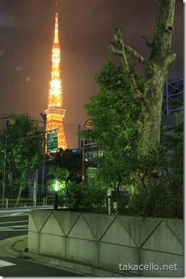東京タワーの望む