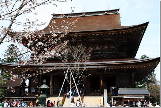 桜と金峯山寺