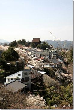 桜と吉野山の町並みと金峯山寺