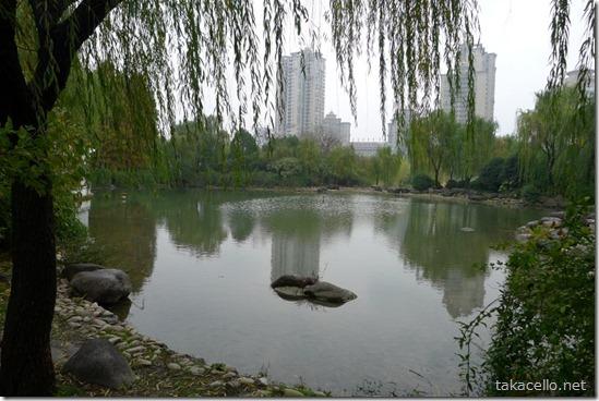 新虹橋中心花園