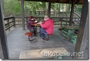 公園でトランプをする老男女