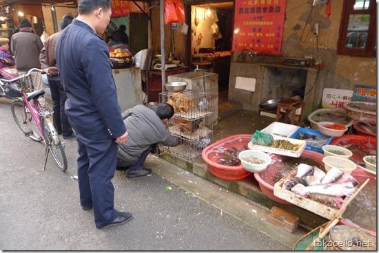 上海の青空市場で鳩が…